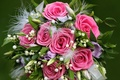 Picture flower, leaves, love, flowers, nature, holiday, gift, tenderness, roses, beauty, bouquet, spring, petals, pearl, beads, ...