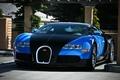 Picture Veyron, black, blue, Bugatti