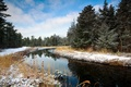 Picture winter, forest, landscape, river