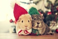 Picture Love, winter, Vintage, Bokeh, In Love, Winter, In love, Colorful, Mouse, Sweet, New Year, Christmas, ...