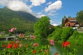 Picture forest, clouds, trees, flowers, mountains, lake, home, Austria, resort, the bushes, Bad Aussee, Bad Aussee