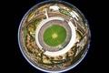 Picture Australia, stadium, cricket, Melbourne