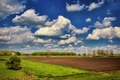 Picture clouds, nature, plow, plow, Nature, trees, field, the sky, sky, clouds, landscape