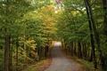Picture nature, roads, autumn
