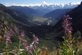 Picture georgia, caucasus, svaneti