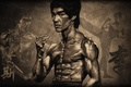 Picture torso, Bruce Lee, male, stand, brucee lee, muscles, actor