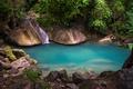Picture water, nature, lake, stones, vegetation, jungle