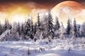 Picture snow, planet, collage, forest, winter