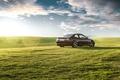 Picture green grass, green, 3 Series, black, rear, grass, BMW, E46
