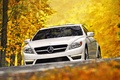 Picture autumn, white, leaves, trees, Mercedes-Benz, supercar, Mercedes, the front, amg, цл63, cl63, AMG