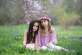 Picture nature, mood, girls