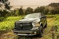 Picture hemi, vegetation, HEMI, 5.7-liter, 1500, truck, Dodge, black, road, Ram