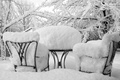 Picture winter, snow, trees, photo, background, Wallpaper, chairs, Nature, frost, table