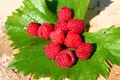 Picture raspberry, leaves, sand