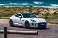Picture F-Type, Jaguar, White, 2014, Cut, Cars