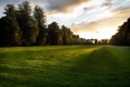 Picture grass, leaves, the sun, rays, light, trees, sunset, birds, lawn, the evening, track, the end ...