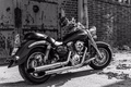 Picture design, style, motorcycle, form, bike