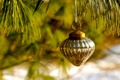 Picture toy, New Year, branch, holidays, winter, pine, Christmas, New Year, Christmas, Christmas, needles