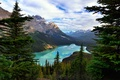 Picture forest, clouds, trees, mountains, lake, rocks, Canada, Albert, Banff National Park, Alberta, Canada, Banff, Peyto ...