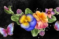 Picture flowers, petals, background, nature, butterfly, collage