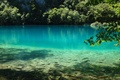 Picture fish, lake, water, nature, blue, Plitvice Lake