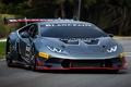 Picture Super, Huracan, Lamborghini, LP 620-2, Trophy
