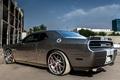 Picture Dodge, Challenger, SRT8, machine