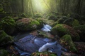 Picture river, stones, moss, boulders