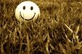 Picture grass, smile, smile, mood, smile