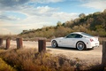 Picture road, BMW, BMW, white, white, Z4M