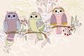 Picture flowers, birds, branch, owls, texture