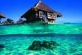 Picture the ocean, Bungalow, Bora, blue lagoon, french polynesia, bora-bora