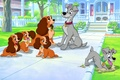 Picture Lady and the Tramp, homeless dog, Homer, American Cocker Spaniel, Hobo, dogs, Lady, puppies, cartoon, ...