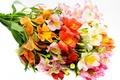 Picture flowers, bouquet, beautiful, alstremeria, Alstroemeria, flower