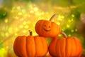 Picture pumpkin, Helloween, Halloween, background