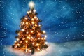 Picture merry christmas, snow, ice, lights, balls of light, decoration, light balls, ice, light, snow, decoration, ...